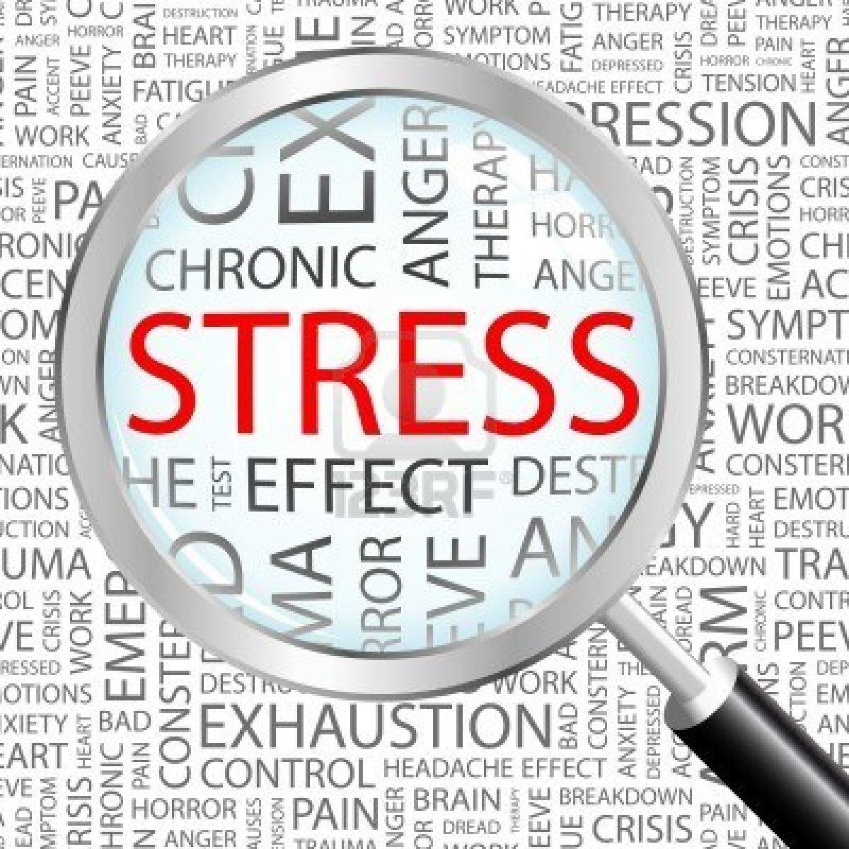 Stress – 4 Step Panic Plan